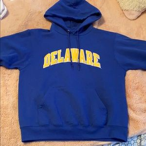 University of Delaware Champion Hoodie